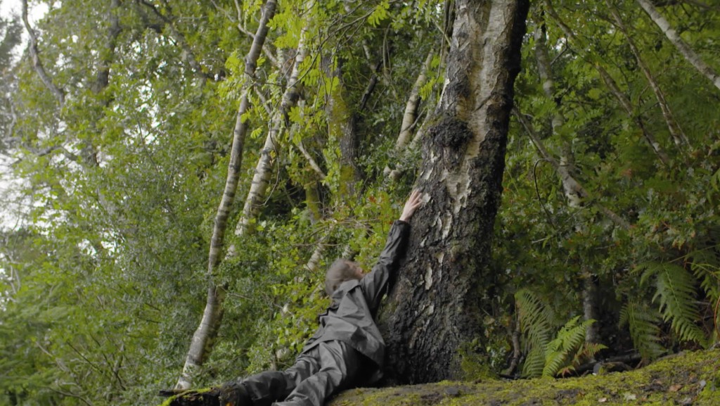 Film still from Far Flung Dances - II (The Wood) by Mary Wycherley. A person falls down a tree in a forest, with arms stretched out toward the sky, they are wearing clothes which blend into the surroundings.