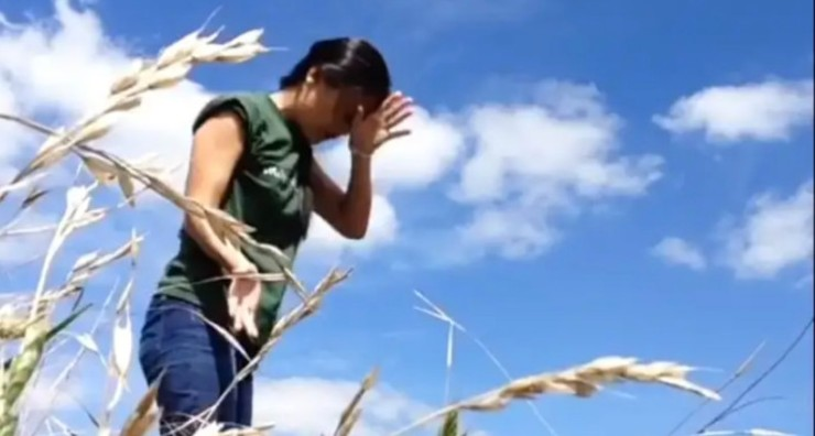 Film still from My Days by Katsura Isobe. Woman standing in a corn field under blue sky, gesturing with her hand towards her forehead.